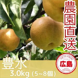 豊水 梨 3kg(5~8個)|fruitex