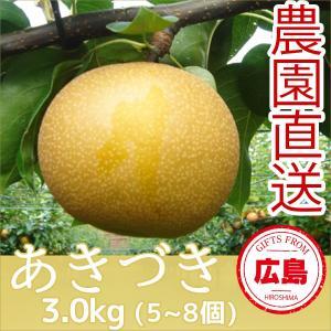 あきづき 梨 3kg(5~8個)|fruitex