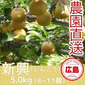 新興 梨 5kg(8~11個)|fruitex