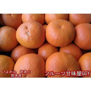 いよかん 訳あり 熊本産 1箱 箱込10キロ(9kg+保証分500g) 伊予柑 イヨカン|fruitkanmiya-ggy