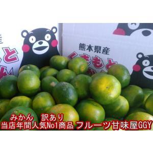 【大赤字企画!】みかん 訳あり 熊本産 1箱 箱込10キロ(9kg+保証分500g)フルーツ グルメ