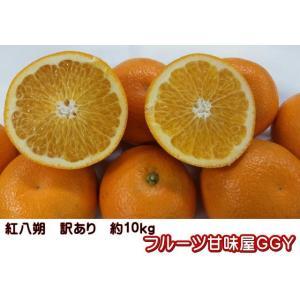 紅八朔 訳あり 熊本産 1箱 箱込10キロ(9kg+保証分500g)
