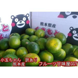 小玉ちゃん 熊本みかん 訳あり 1箱 箱込10キロ(9kg+保証分500g)フルーツ グルメ|fruitkanmiya-ggy
