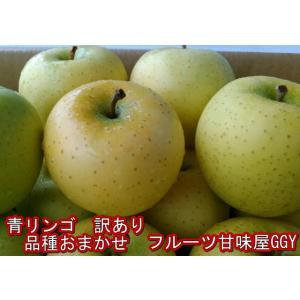 青りんご・訳あり(きおう・トキ・シナノゴールド・王林)など産...
