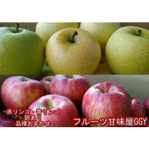 赤りんご・青りんご 訳あり 食べ比べ1箱(各約5キロ 計約1...