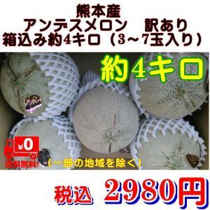 アンデスメロン 訳あり 熊本産 1箱 箱込約4.5キロ(3〜...