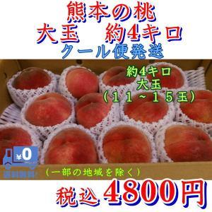お中元 御中元 もも ギフト クール便発送 熊本産 桃 大玉(11〜15玉)たっぷり約4キロ もも モモ |fruitkanmiya-ggy