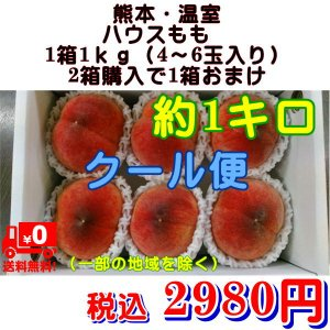 クール便発送 温室 ハウスもも 熊本産 1箱1kg(4〜6玉入り) 2箱購入で1箱おまけ! |fruitkanmiya-ggy