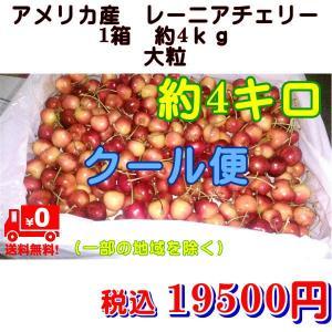アメリカ産 レーニアチェリー 大粒 1箱 約4kg クール便発送 fruitkanmiya-ggy