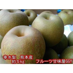 熊本産 幸水梨 約5キロ(約11玉〜20玉) なし 梨 ナシ 【クール便】 fruitkanmiya-ggy