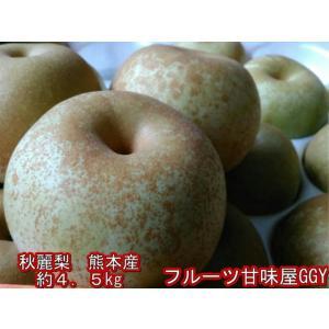 秋麗梨 熊本産 1箱約4.5キロ(約10〜22玉)希少品! 秋麗 なし ナシ フルーツ fruitkanmiya-ggy