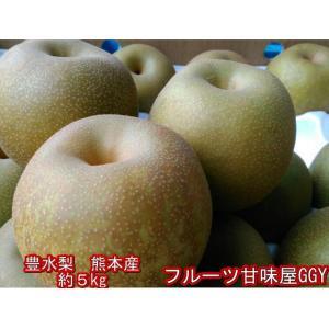 熊本産 豊水梨 約5キロ(約11玉〜20玉) なし 梨 ナシ fruitkanmiya-ggy