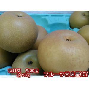 熊本産 秋月梨 約5キロ(約11玉〜18玉) なし 梨 ナシ fruitkanmiya-ggy