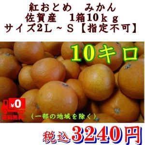 紅おとめ みかん 佐賀産 1箱10kg サイズ2L〜S【指定不可】|fruitkanmiya-ggy