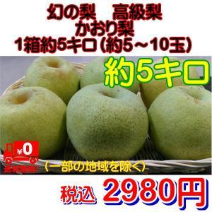 幻の梨 高級梨 かおり梨 熊本産 1箱 箱込約5kg(約5〜10玉) fruitkanmiya-ggy