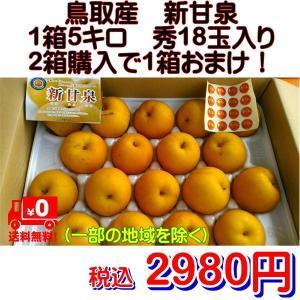 梨 新甘泉 鳥取産 1箱5kg 秀18玉入り 2箱購入で1箱おまけ! fruitkanmiya-ggy