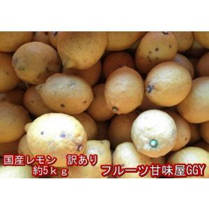 国産レモン 訳あり 熊本産 1箱5kg|fruitkanmiya-ggy