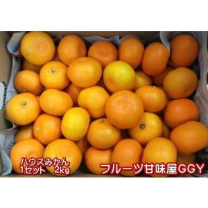 ハウスみかん 1セット2kg 2セット購入で1kgおまけ!熊本産 クール便発送|fruitkanmiya-ggy