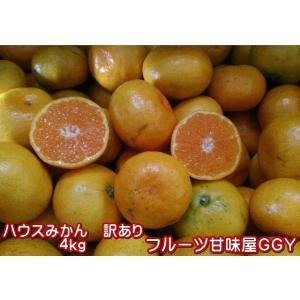 ハウスみかん 訳あり 約4kg 熊本産 【クール便発送】|fruitkanmiya-ggy