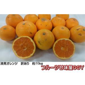 清見オレンジ 訳あり 熊本産 1箱 箱込10キロ(9kg+保証分500g)|fruitkanmiya-ggy