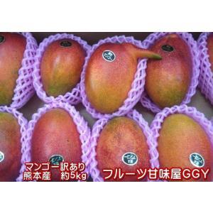 マンゴー 訳あり【規格外】加工用 熊本産 メガ盛り 約5kg クール便発送|fruitkanmiya-ggy