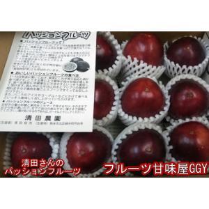 パッションフルーツ 約1kg(9〜15玉)鹿児島産・宮崎産|fruitkanmiya-ggy