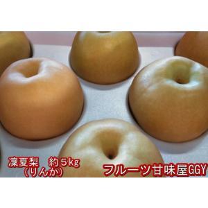 凜夏梨 りんか なし 1箱 約5kg(約6〜16玉)熊本産 新品種 fruitkanmiya-ggy