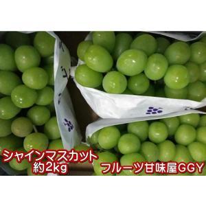 シャインマスカット 約2kg(3〜6房)熊本産・福岡・大分産 クール便発送