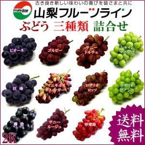 ぶどう 詰め合わせ おまかせ3種類セット 2kg 山梨県産 特産品 産地直送 送料無料一部地域を除く|fruits-line