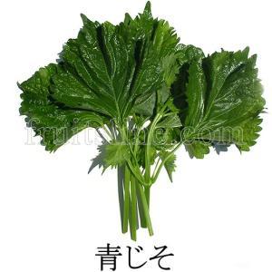 青じそ 無農薬無化学肥料栽培野菜 山梨県産