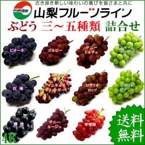ぶどう 詰め合わせ おまかせ3種類セット 4kg 山梨県産 特産品 産地直送 送料無料一部地域を除く|fruits-line