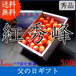 サクランボ さくらんぼ 紅秀峰 父の日 ギフト  秀 2L〜Lサイズ 500g バラ 送料無料 一部地域を除く|fruits-line