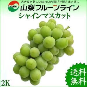 シャインマスカット贈答用 山梨 特産品 ぶどう 2kg 秀品 満杯詰 産地直送 送料無料一部地域を除く|fruits-line