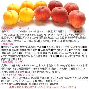 敬老の日 プレゼント ギフト フルーツ 桃 モモ もも 山梨県産 特産品 甲斐黄金桃 特秀 1.5kg 送料無料 一部地域を除く|fruits-line|02