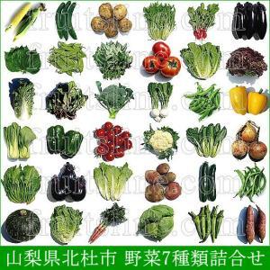 野菜セット 農家直送 山梨県産 無農薬 無化学肥料栽培 野菜9品目詰め合わせ 送料無料 一部地域を除く