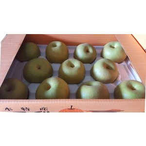 荒尾の梨 5g 秀 12玉から16玉 (荒尾梨オープン箱入り)|fruits-maboroshi