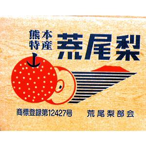 荒尾の新高梨 7.5kg 8玉入り産地箱入り|fruits-maboroshi