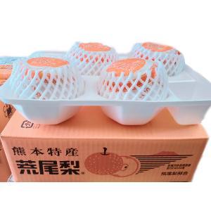 荒尾梨 「新高梨」大玉系 約3.7kg 4玉入|fruits-maboroshi