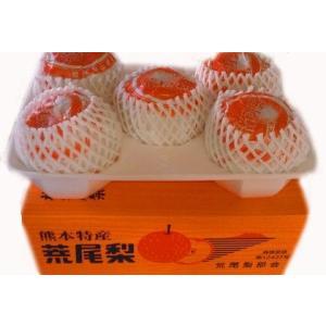 荒尾梨 「新高梨」中大玉系 約3.7kg 5玉入|fruits-maboroshi