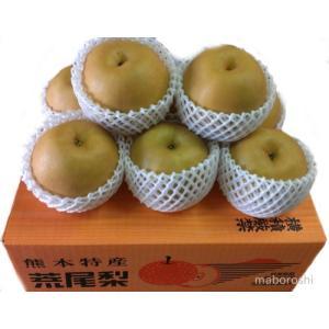 荒尾の新高梨  3kg 秀 (地方発送産地箱入り)|fruits-maboroshi