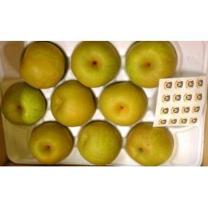 熊本吉野梨 9玉(大玉)から14玉(中玉) (5kg)産地箱入|fruits-maboroshi