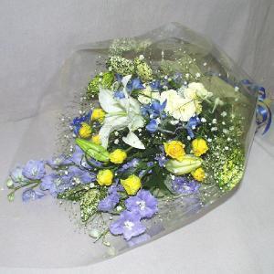 青系 花束 贈答用 メッセージカード付 (HT021_47)|fs-hanatomo
