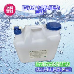 強アルカリイオン電解水12L【Ph12.5】(強アルカリイオン電解水12L)送料無料 除菌スプレー 電解水 除菌水 業務用 ペット用品 お子様の玩具|fs-yokohama