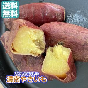 冷やし 濃密やきいも 1.2kg/240gパックが5袋 送料無料(冷蔵 濃密やきいも×5P)青果 無添加 冷蔵  食べきりサイズ 焼き芋 国産 紅はるか シルクスィート fs-yokohama
