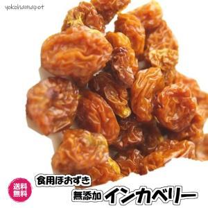 送料無料(インカベリー 1kg)食用ほおずき ドライフルーツ ゴールデンベリー 無添加 砂糖不使用 ...