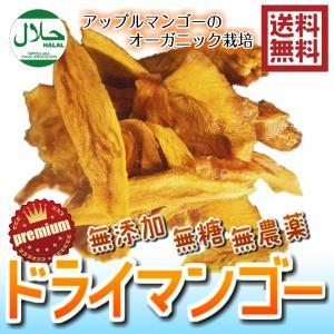 無添加マンゴー ハラール スリランカ産 120g/60gパックが2袋入り ドライフルーツ ハラール 砂糖不使用(Pマンゴー×2P)送料無料 ハラール認証 JAS基準栽培|fs-yokohama