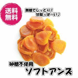 砂糖不使用ソフトアンズ ブレインハイム種 アメリカ産160g/80gパックが2袋入 ドライフルーツ 送料無料(アンズ80g×2P)チャック袋 小分け  US産 種抜|fs-yokohama