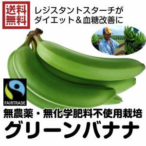 送料無料 無農薬グリーンバナナ 11kg レジスタントスターチ ダイエット フェアトレード グリンバナナ(青バナナ 11kg)