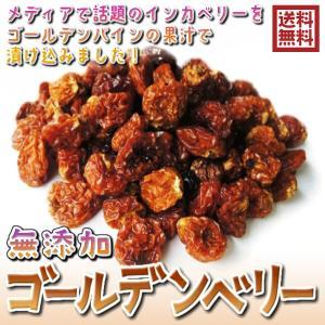 送料無料 無添加(ゴールデンベリー 500g)食用ほおずき ...