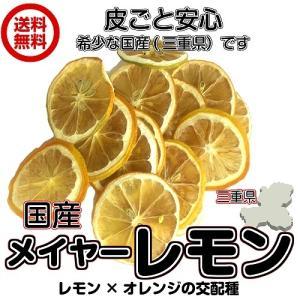 無添加メイヤーレモンスライス40g/20gパックが2袋入り 輪切り ドライフルーツ 砂糖不使用 送料無料 (メイヤー20g×2P FSY) フォンダンウォーター|fs-yokohama